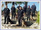 Odessa Police Department K-9 Unit All dogs selected and trained by Steve